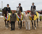Die Landeschampions der Mecklenburger Springpferde 2011 v.l. Cartagena (v. Cellestial),